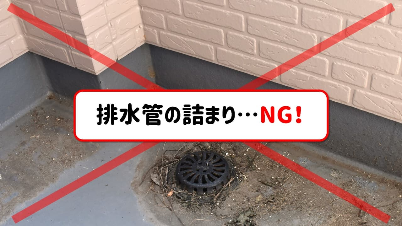 排水管の様子
